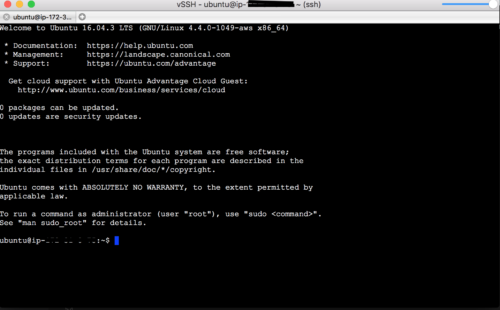 vSSH Ubuntu Willkommen
