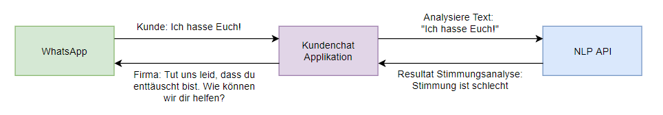 Funktionsweise NLP API Call
